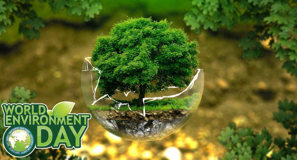 تنوع زیستی تنوع زیستی شعار روز جهانی محیط زیست 2020 1584515016 photo1 1024x552 1