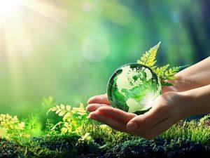 تنوع زیستی تنوع زیستی شعار روز جهانی محیط زیست 2020 61650835 300x225