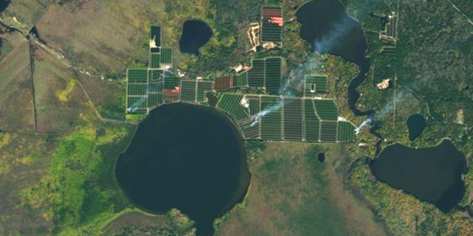 طبق پیش بینی های انجام شده تا سال 2050 میلادی، جمعیت جهان دوبرابر، رژیم های غذایی تغییر دستخوش های جدی و استفاده از انرژی های زیستی رایج خواهد شد. تنها خشکسالی هایی که در این بازه زمانی اتفاق میافتد باعث کاهش 10 درصدی میزان تولیدات کشاورزی میشود، حتی اگر از تضعیف خاک ها و منابع معدنی آن ها صرفنظر کنیم. تقریبا 12 درصد از خشکی موجود روی کره زمین برای زراعت مورد استفاده قرار میگیرد. با افزایش جمعیت کره زمین، تقاضای محصولات کشاورزی بیش از هر زمان دیگری شده است و برخی از کشاورزان برای افزایش میزان زراعت خود از اطلاعات ماهواره ای استفاده میکنند. تکنولوژی های زمین-داده ای برای نقشه کشی سه بعدی ناهنجاری های محصولات کشاورزی و وضعیت خاک ها استفاده میشوند و این تکنولوژی به کشاورزان این امکان را میدهد تا بداند که برای رشد بهتر محصولات خود نیاز به افزودن چه عناصری به خاک دارد، به طور مثال آب، دانه یا کود که باید در هر منطقه اضافه شوند که این مناطق با عنوان مناطق تحت مدیریت شناخته میشوند. نقشه های منطقه ای اختلاف بین گیاهان سالم و ناسالم را با استفاده از میزان نور بازتابی از آنان در باند های مختلف الکترومغناطیسی تشخیص میدهند در حالی که نقشه های تجویزی به کشاورزان میگویند که چه مقدار آب، دانه یا کود به هر منطقه ی تحت مدیریت اضافه کنند. تعداد ماهواره ها با گذشت زمان در حال افزایش است و کیفیت داده هایی که آنان برای مشاوران و کشاورزان نیز فراهم میکنند روز به روز بیشتر میشود. دید ماهواره ای به کشاورزان کمک میکند تا به سرعت از مشکلات فصلی از قبیل کمبود مواد معدنی، آفات و بیماری ها آگاهی یابند. این اطلاعات شانس بهتری به کشاورزان برای پیشگیری یا حل مشکلاتی که ممکن است بر روی رشد محصولات کشاورزی اثر بزارد، میدهد. ماهواره ها برای به تصویر کشیدن زمین کشاورز همراه با جزئیات زیاد به کار میروند. وقتی که این نقشه ها با اطلاعات سیستم جغرافیایی یا به اختصار GIS همراه میشوند، ماهواره ها میتوانند با تمرکز بیشتر و بازدهی بالاتری به رشد محصولات کمک کنند. به عنوان یک مثال، محصولات مختلفی ممکن است برای کاشت در یک زمین با استفاده از کود پیشنهاد شوند که این پیشنهادات از نظر اقتصادی به صرفه هستند و علاوه بر این مساله، به محیط زیست نیز آسیبی نمیرسانند. اطلاعات سیستم جغرافیایی یا همان GIS که پیشتر به آن اشا