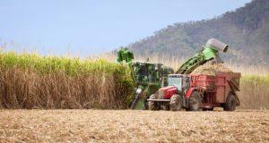 در سال های گذشته پیشرفت های قابل توجهی در زمینه کشاورزی مدرن ایجاد شده است. این مساله در پاسخ به نیاز پایداری و دستیابی به امنیت غذایی در سال های پیشرو ایجاد شد و توسط ورود تکنولوژی به حوزه کشاورزی در حال پاسخ گرفتن است. فن آوری های گوناگون منجر به انقلاب بزرگی در کشاورزی شده است که در این مقاله و مقالات بعدی به انواع روش های مدرن کشاورزی میپردازیم. کشاورزی مدرن کشاورزی مدرن modern farming1101 620x330 1 300x160