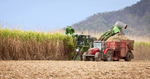 در سال های گذشته پیشرفت های قابل توجهی در زمینه کشاورزی مدرن ایجاد شده است. این مساله در پاسخ به نیاز پایداری و دستیابی به امنیت غذایی در سال های پیشرو ایجاد شد و توسط ورود تکنولوژی به حوزه کشاورزی در حال پاسخ گرفتن است. فن آوری های گوناگون منجر به انقلاب بزرگی در کشاورزی شده است که در این مقاله و مقالات بعدی به انواع روش های مدرن کشاورزی میپردازیم. کشاورزی مدرن کشاورزی مدرن modern farming1101 620x330 1