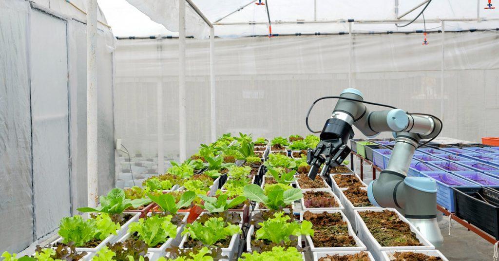 کشاورزی به سرعت در حال تبدیل شدن به یک صنعت هیجان انگیز با فناوری پیشرفته است و متخصصان جدید، شرکت های جدید و سرمایه گذاران جدید را به خود جلب می کند. این فناوری ها که به سرعت در حال توسعه هستند، یکی از آنها استفاده از ربات ها در صنعت کشاورزی میباشد، این موضوع نه تنها توانایی تولید کشاورزان را ارتقا می دهد بلکه پیشرفت در زمینه های رباتیک و اتوماسیون را نیز پدید می آورد . ربات ها در کشاورزی ربات ها در صنعت کشاورزی RIA blog Modern organic farmhouse concept fbli 1024x536