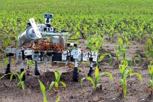 در این مقاله به بررسی کاربرد ربات ها در کاشت بذر گیاهان میپردازیم. بسیاری از گیاهان غذایی به عنوان بذر در یک مزرعه زندگی خود را آغاز می کنند. کاشت بذر محصول برای کشاورزان یک فعالیت وقت گیر و خسته کننده است و این امر در مزارع بزرگ کشاورزی تشدید می شود. کاشت دستی بذر یک فرآیند بسیار ناکارآمد است که به تلاش زیاد انسان نیاز دارد.روش سنتی برای کاشتن بذر، پراکنده کردن آنها با استفاده از پخش کننده هایی است که به تراکتور متصل است. درنتیجه هنگامی که تراکتور با سرعت ثابت حرکت می کند، بذر زیادی به حاشیه زمین می ریزد. این یک روش کاشت کارآمد نیست چراکه امکان هدر رفت در آن بسیار بالاست. کاربرد ربات ها در کاشت بذر گیاهان کاربرد ربات ها در کاشت بذر گیاهان 3 300x200