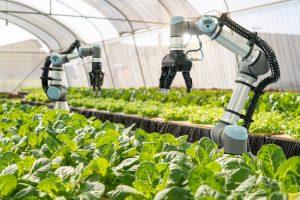 کاربرد ربات ها در برداشت محصولات و بکارگیری آنها، تبدیل به یکی از موضوعات پر چالش برای محققان در عرصه کشاورزی شده است که در این مقاله سعی به پرداختن به این چالش و بررسی جوانب آن می پردازیم. کاربرد ربات ها در برداشت محصولات کاربرد ربات ها در برداشت محصولات Top Agriculture Colleges In Himachal Pradesh 2 300x200