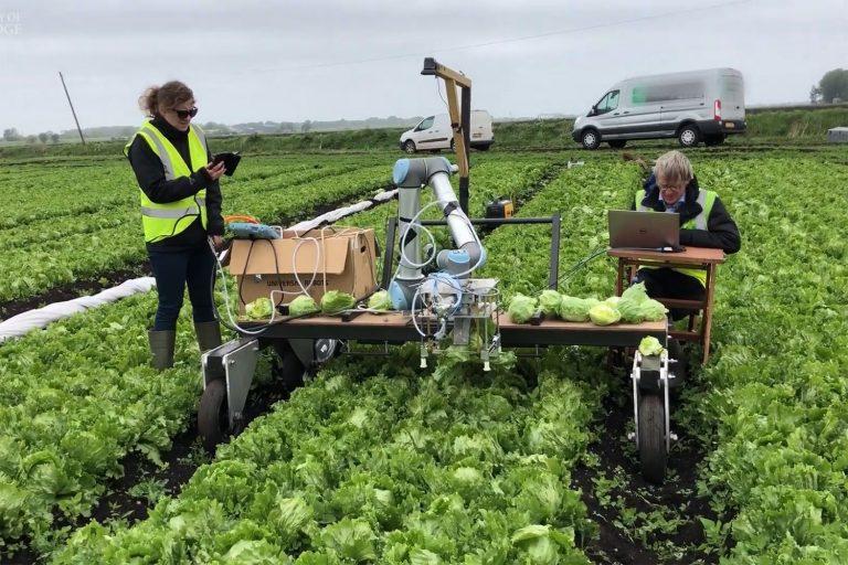 کاربرد ربات ها در برداشت محصولات و بکارگيري آنها، تبديل به يکي از موضوعات پر چالش براي محققان در عرصه کشاورزي شده است که در اين مقاله سعي به پرداختن به اين چالش و بررسي جوانب آن مي پردازيم.